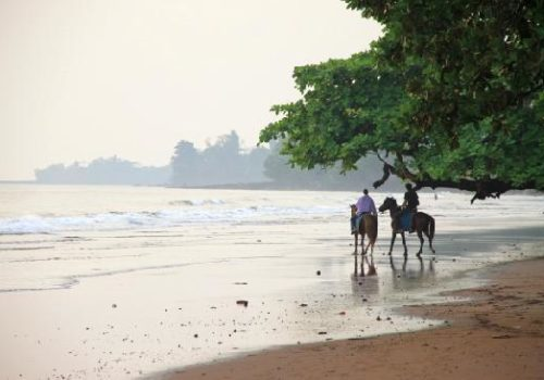 From Limbe With Love !  Welcome To Limbe (Morceaux choisis)